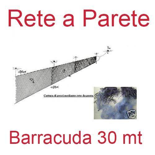 13679 - Rete a parete Barracuda 30 mt