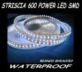 600 12V SMD LED STRIP 5 METERS ICE WHITE 7000K WATERPROF CAMPER